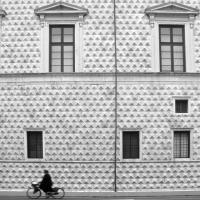 Palazzo diamanti ferrara2 - TIEGHI MAURIZIO - Ferrara (FE)