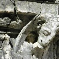 Ferrara vera da pozzo cortile palazzo dei Diamanti particolare - Nicola Quirico - Ferrara (FE)