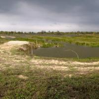 3 Panorama oasi - Ascari Gian Piero - Carpi (MO)