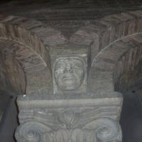 Capitello della Torre Ghirlandina - Alien life form - Modena (MO)