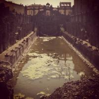 Foschie di luce - Chiara soldati - Sassuolo (MO)