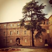 Cortile D'onore e l'albero centenario - Chiara soldati - Sassuolo (MO)
