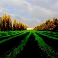 Autunno al parco ducale - Guido rustichelli - Sassuolo (MO)