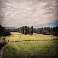 Settembre - Chiara Soldati - Sassuolo (MO)