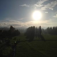 Fine novembre - Chiara Soldati - Sassuolo (MO)