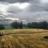 Primo autunno - Chiara Soldati - Sassuolo (MO)