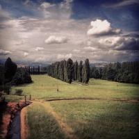 La fine di maggio - Chiara Soldati - Sassuolo (MO)