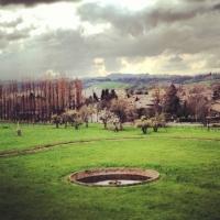 Vista parco - Chiara Soldati - Sassuolo (MO)