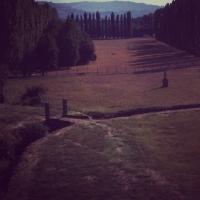 Giardini vetusti - Chiara Soldati - Sassuolo (MO)