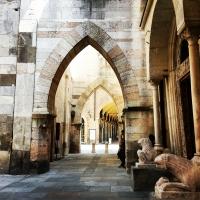 Tra il Duomo e la Ghirlandina - Simona Bergami - Modena (MO)
