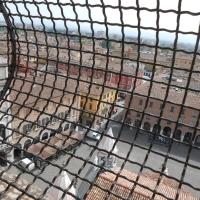 Torre Ghirlandina a Modena (veduta piazza Duomo) - Cristina Guaetta - Modena (MO)
