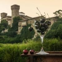 Rocca di Vignola1 - Lara zanarini - Vignola (MO)