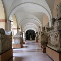 Modena Pal. Musei - Marco bordini - Modena (MO)
