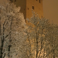 Vista nottorna durante una nevicata - 52AttilioRighi - Nonantola (MO)