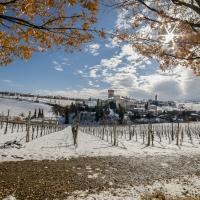 Meraviglioso in qualsiasi stagione - Angelo nastri nacchio - Castelvetro di Modena (MO)