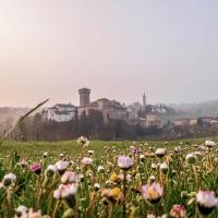 Alba di primavera - Luca Nacchio - Castelvetro di Modena (MO)