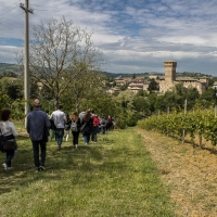 Di castello in Castello - Angelo nastri nacchio - Castelvetro di Modena (MO)