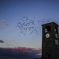 � tempo di volare - Luca Nacchio - Castelvetro di Modena (MO)