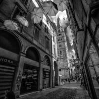 Se passate da Modena e piove, gli ombrelli già ci sono - Angelo nastri nacchio - Modena (MO)