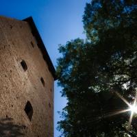 Vista verso l'alto - Claudio Minghi - Nonantola (MO)