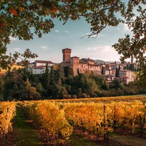 Visita guidata all Castello di Levizzano