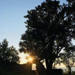 Rocca di Sestola - Finestrone ovest foto di: |Alberto Biolchini| - Archivio fotografico del castello