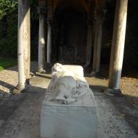 Ricci Oddi 4 - Maria91 - Piacenza (PC)