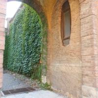 DRicci Oddi 5 - Maria91 - Piacenza (PC)