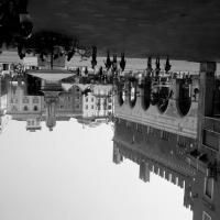 Palazzo Gotico 6 - Maria91 - Piacenza (PC)