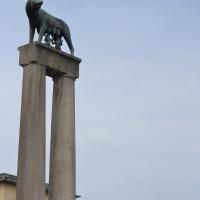 Lupa 1 - CLAUDIABAQ - Piacenza (PC)