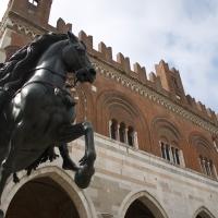 Cavallo rampante - Filmarche - Piacenza (PC)