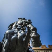 Statua equestre Piacenza - Danila Corgnati - Piacenza (PC)