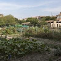 Project 060917 4813 05 - Gppaless - Piacenza (PC)