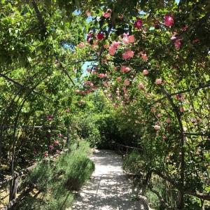 L'Era di Passaggio - Parco delle Fiabe al Castello di Gropparello