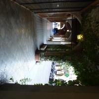 Dettaglio dei portici con rampicante su Via Roma - Busseto - IL MORUZ - Busseto (PR)