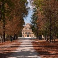 Parco Ducale - Viale e vista del Palazzo Ducale - Diego Matarangolo - Parma (PR)