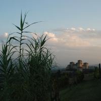 ID 0340181415-Torrechiara veduta dalle vigne - Manuparma - Langhirano (PR)