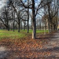 Scorcio del parco ducale di Parma - Goethe100 - Parma (PR)
