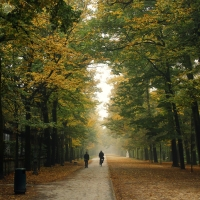 Parco Ducale 1 - GiacomoClickMoceri - Parma (PR)