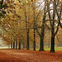 Parco Ducale 4 - GiacomoClickMoceri - Parma (PR)