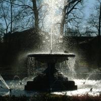 Fontana del parco - Albertobru - Colorno (PR)