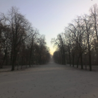 Vialone del parco ducale - Manuel.frassinetti - Parma (PR)