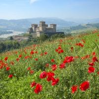 Il Castello di Torrechiara - Enrico Robetto - Langhirano (PR)