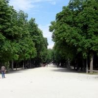 Vialone principale primavera - Clawsb - Parma (PR)