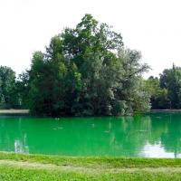 Parco Ducale verde su verde - Clawsb - Parma (PR)