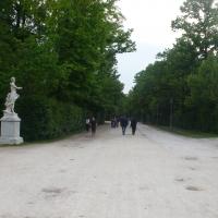 Parco ducale 2 - Parma - RatMan1234 - Parma (PR)