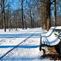 La neve al parco ducale - Davide Fornari - Parma (PR)