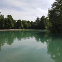 Laghetto parco Ducale Parma - Alice90 - Parma (PR)