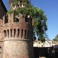 Rocca Sanvitale - Torre e fossato - Micronautilus - Fontanellato (PR)