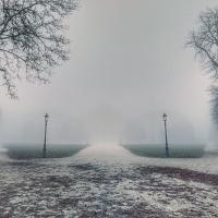 Nebbia a parco ducale - Fedenew1983 - Parma (PR)